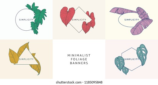 Minimalist foliage banner template design collection, Philodendron bipinnatifidum, Philodendron gloriosum, banana leaves, Philodendron orange, Monstera deliciosa with geometric frame