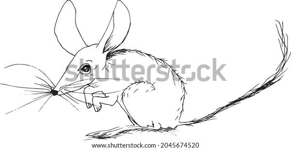 Minimalist tattoo style rat black and white line art illustration