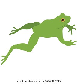 Minimalistic Vector Illustration of Jumping Frog