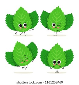 Mint. Cute cartoon herb vector character set isolated on white