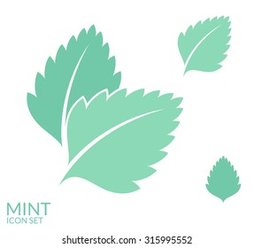 Mint. Icon set. Fresh leaves on white background