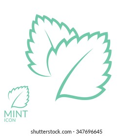 Mint. Icon set. Isolated mint leaves on white background. Vector illustration EPS10