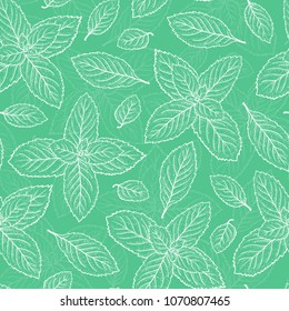 Mint Leaf Vector Seamless Pattern. Hand Drawn Peppermint Green Tea. Fresh Mint leaves Background. Medicinal plants or Spicy Herbs Dot work illustration