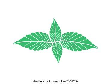 Mint logo. Isolated mint on white background