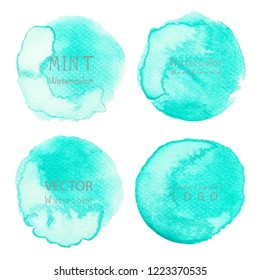 Mint watercolor background, Pastel watercolor logo, Vector illustration.