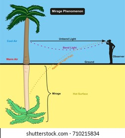 Mirage Phenomenon infographic diagram with an example of an observer man standing on the desert hot surface looking in to palm tree and the reflection appear for physics science education