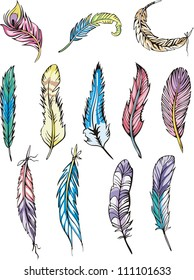 Miscellaneous motley feathers. Set of color vector illustrations.