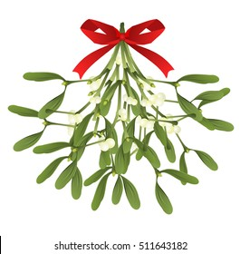 Mistletoe. Hand drawn vector illustration of mistletoe sprigs with red bow isolated on white background for Christmas cards and decorative design.