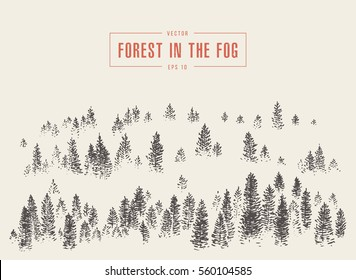 Misty fog in pine forest on mountain slopes, vector illustration, hand drawn, sketch
