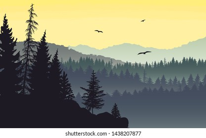 Misty mountain landscape with fir trees on the edge of a cliff
