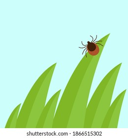 Mite in the tall green grass flat vector illustration, mite hiding in the grass, tick-borne mite color icon, danger tick bug in nature grass