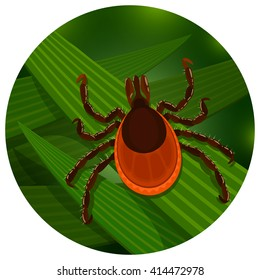Mite in the tall green grass flat vector illustration, mite hiding in the grass, tick-borne mite color icon, danger tick bug in nature grass, color mite illustration in circle, dangerous tick bug icon