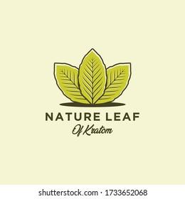 Mitragyna speciosa. kratom leaf logo design vector icon illustration