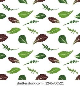 Mix of salad leaves. Arugula, spinach, lettuce leaf, watercress and radicchio. Seamless pattern. Vector illustration.