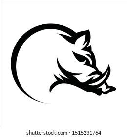 modern boar animal logo design