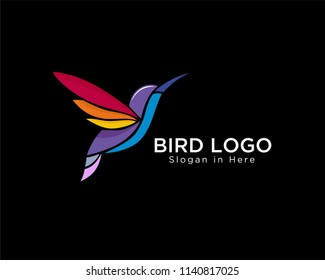 modern colorful hummingbird fly logo