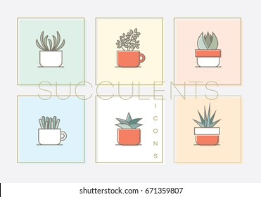 Modern colorful line art icon collection of succulent plants