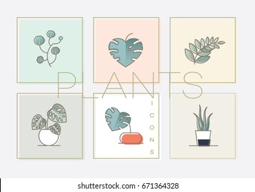 Modern colorful line icon collection of monstera plants, aloe vera, eucalyptus and leafy branch