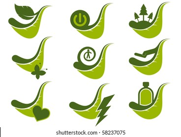 modern ecology leaf set