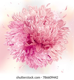 Modern floral art - Pink Asters and Chrysanthemums. Spring flower vector composition made in the form of a ball for wedding decoration, Valentine's Day,  Mother's Day and sales