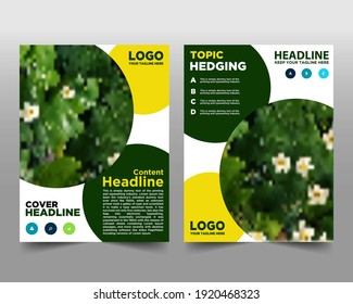 Modern Flyer, green environment design, Eco friendly Book and magazine cover, poster and brochure Design, Editable Vector illustration
