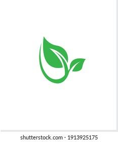 Modern green leaf logo design. Nature icon