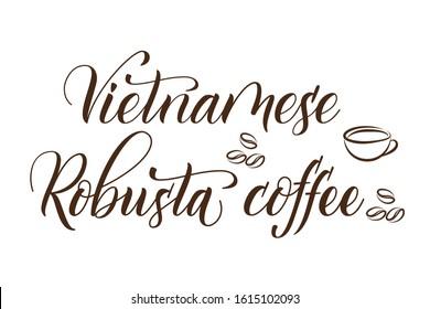 Modern handwritten brush calligraphy Vietnamese Robusta Coffee. Vector illustration.