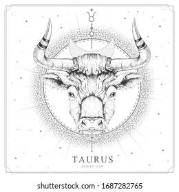 Modern magic witchcraft card with astrology Taurus zodiac sign. Realistic hand drawing bull head