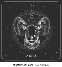 Modern magic witchcraft card with astrology Aries zodiac sign. Realistic hand drawing ram or mouflon head