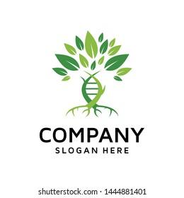 Modern of Nature DNA natural leaf health logo