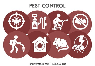 Modern pest control Infographic design template with icons. Anti pest Infographic visualization in bubble design on white background. insecticide template presentation. Creative vector illustration.