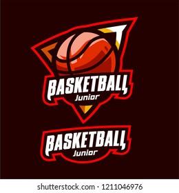 Modern professional basketball sport logo template