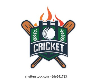 Modern Professional Isolated Sports Badge Logo - Flaming Cricket Team