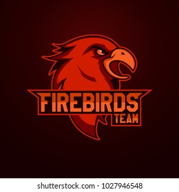 Modern professional logo for sport team. Firebird mascot. Firebirdss, vector symbol on a light background.