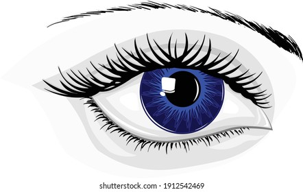 Modern realistic color illustration of a beautiful shiny fashion style human eye with lashes and brow. Illustrator eps vector graphic design.