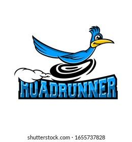 Modern roadrunner bird logo. Vector illustration.