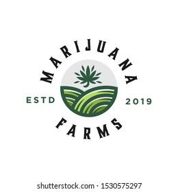 modern vintage hipster cannabis marijuana plant tree farm and garden yard logo badge icon emblem design illustration circle