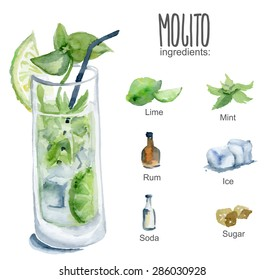 Mojito with ingredients. Vector watercolor illustration.