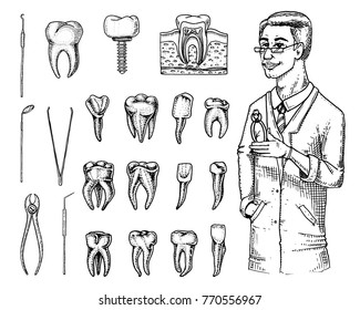 molar teeth enamel, dental set. instruments equipment of the dentist doctor. oral cavity clean or sick. health or caries human. engraved hand drawn in old or sketch. medicine, care for cavity, implant