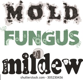 Mold, fungus and mildew. Decorative lettering, no transparencies, EPS 8, each word on a separate layer