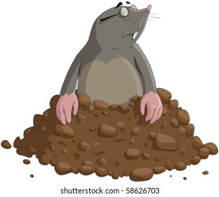The mole has got out of the earth