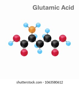 Molecular omposition and structure of Glutamic acid, Glu, best for books and education