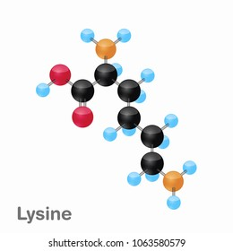 Molecular omposition and structure of Lysine, Lys, best for books and education
