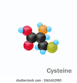 Molecule of Cysteine, Cys, an amino acid used in the biosynthesis of proteins
