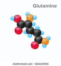Molecule of Glutamine, Gln, an amino acid used in the biosynthesis of proteins