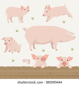 mom pig and baby pig is pink