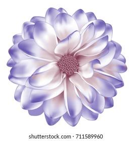 Mona Lisa flower, pastel light purple dahlia flower, Spring Gerber flower.Isolated on white background. illustration vector.