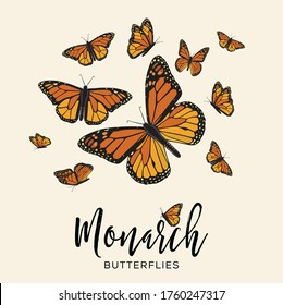 Monarch Butterflies Flying Composition – Copy Space