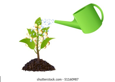 Money tree with golden coins, watering can and water drops, Isolated On White