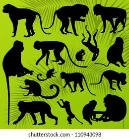 Monkey, ape and chimpanzee detailed silhouettes illustration collection background vector